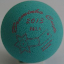 Breminho Cup 2013